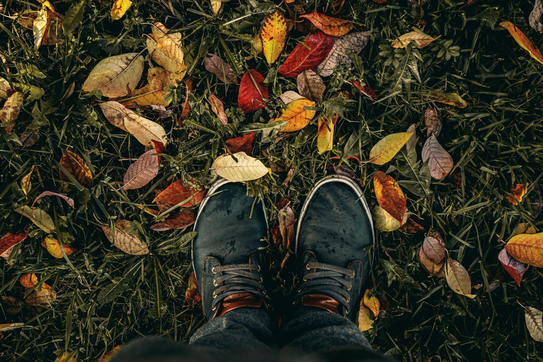 Trendy en comfortabel de herfst in